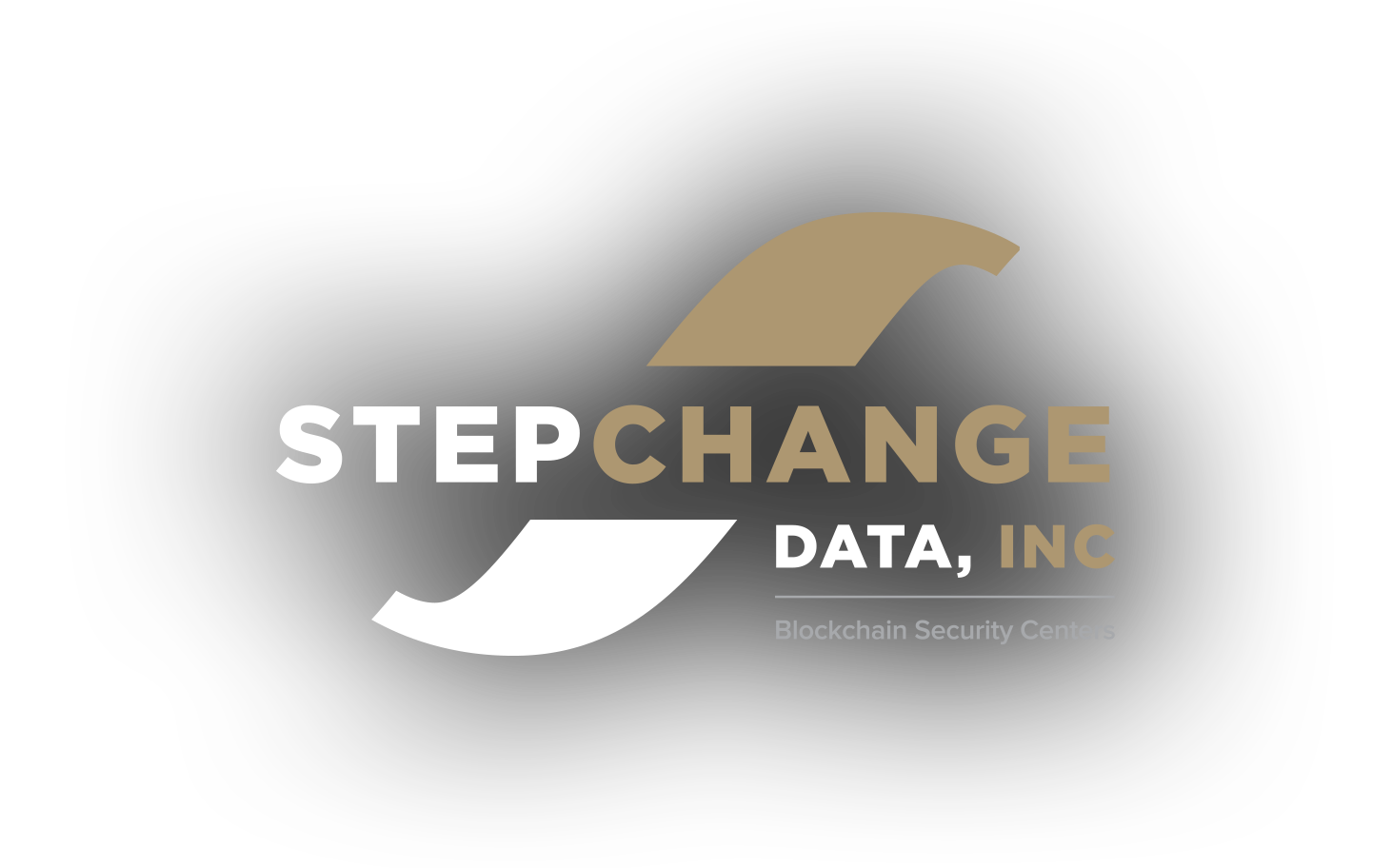 StepChange-Data-Inc-Logo-Light-Web.png
