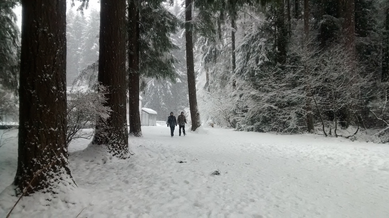 winterwonderland2016_i.jpg