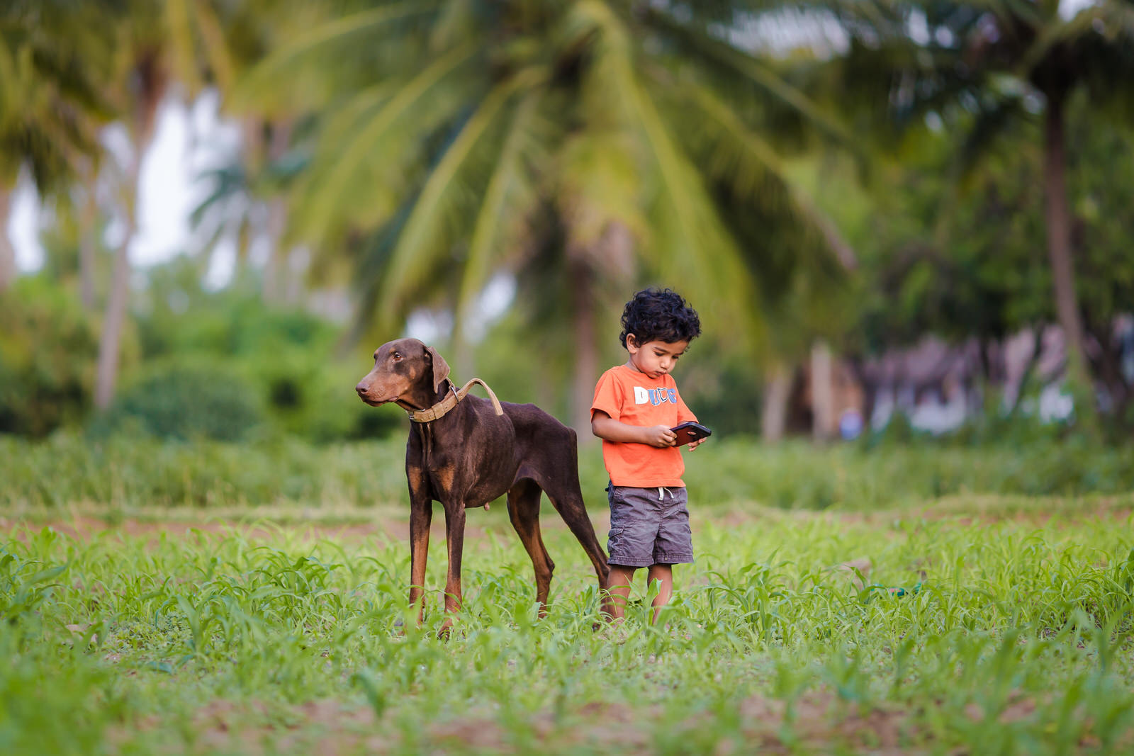 20150328-Sahas-With-Dog-in-fileds-125.jpg