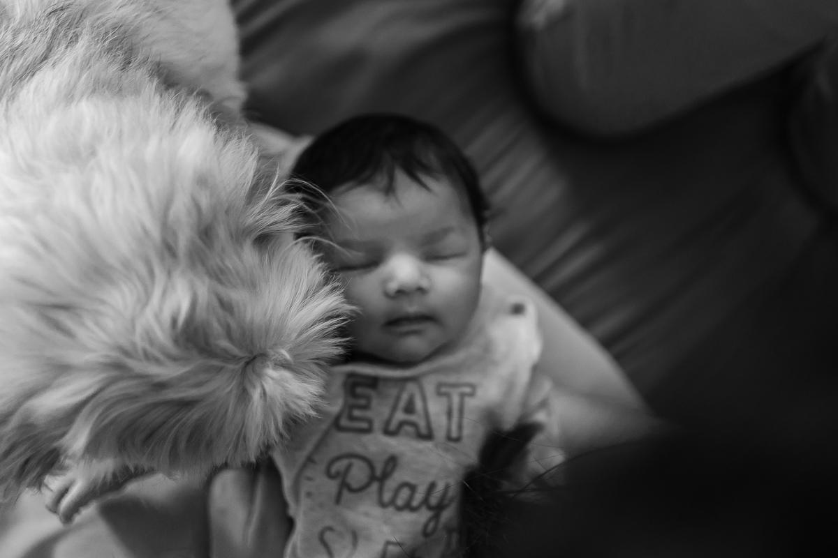 30062019-Adhyan-Newborn-Shoot-197-2.jpg