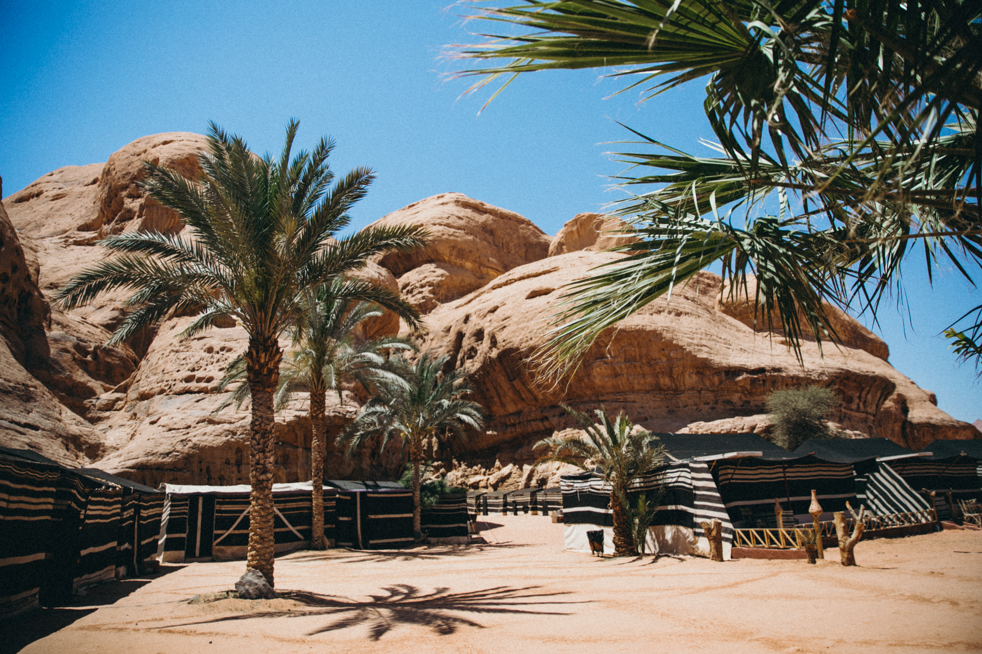 The next day we headed out to Wadi Rum which is the RADDEST place ever. Miles of sand dunes, tent dwellings, camels, massive cliffs, and palm trees.