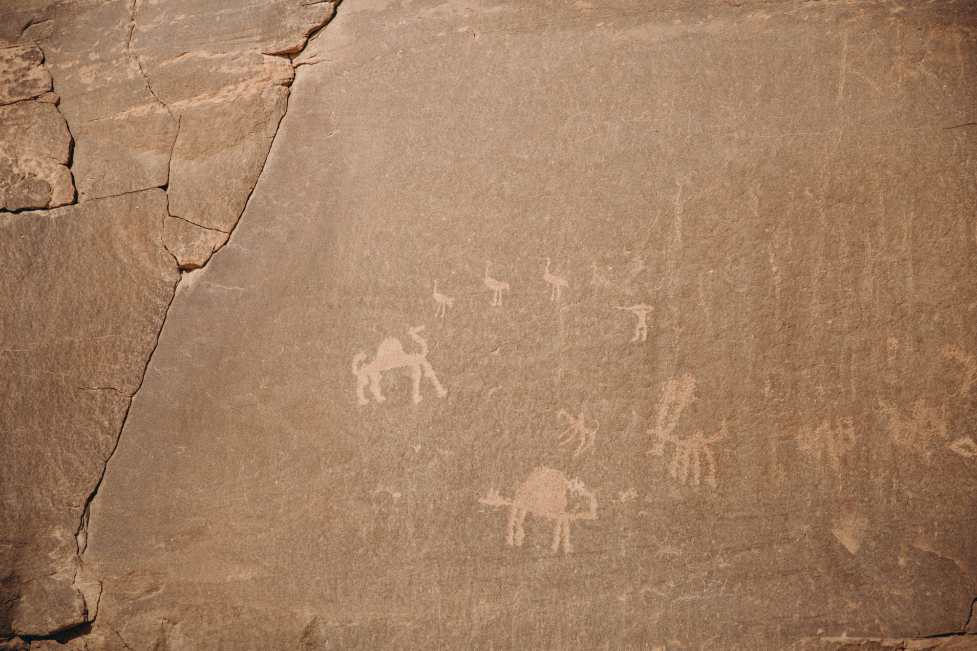 Ancient drawings on the cliffs!