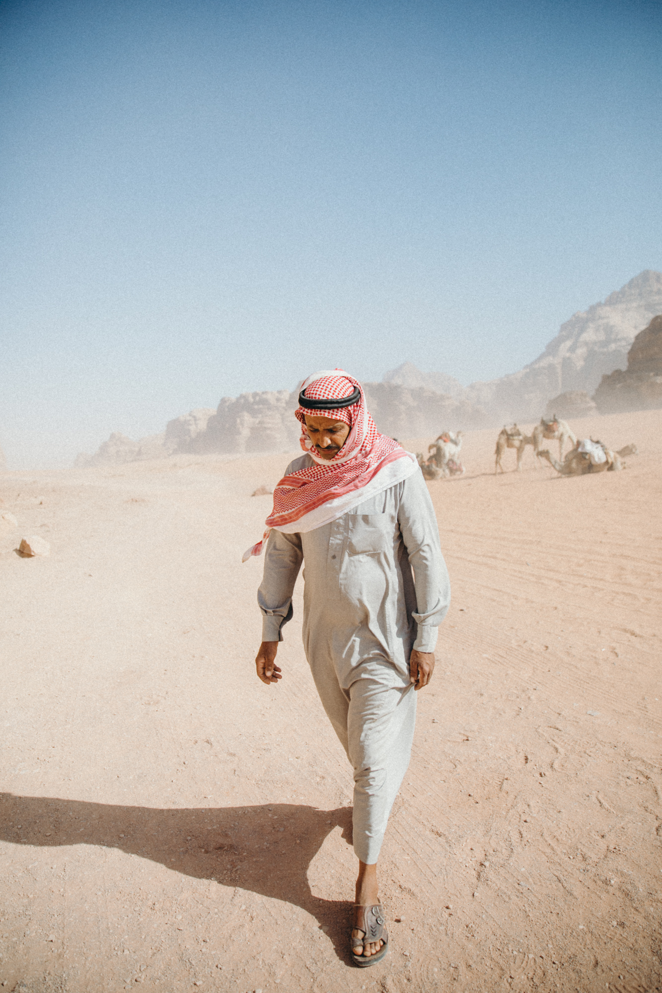 A Bedouin man and his camels.