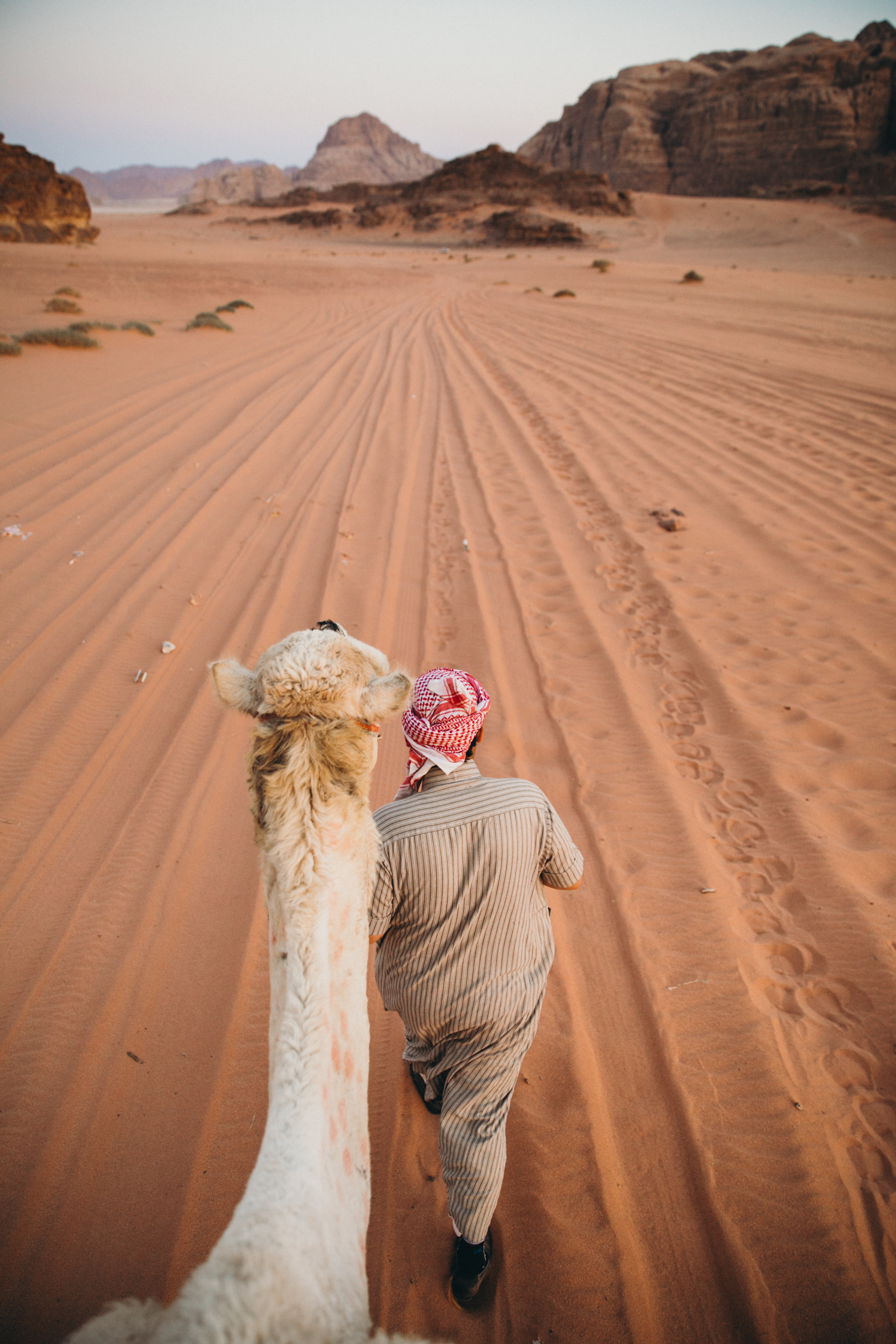 Riding camels in Wadi Rum was by far one of my favorite activities. We met so many characters and I was able to take some of my favorite photos ever! I absolutely love this image, I plan on printing it big someday when I have a house!