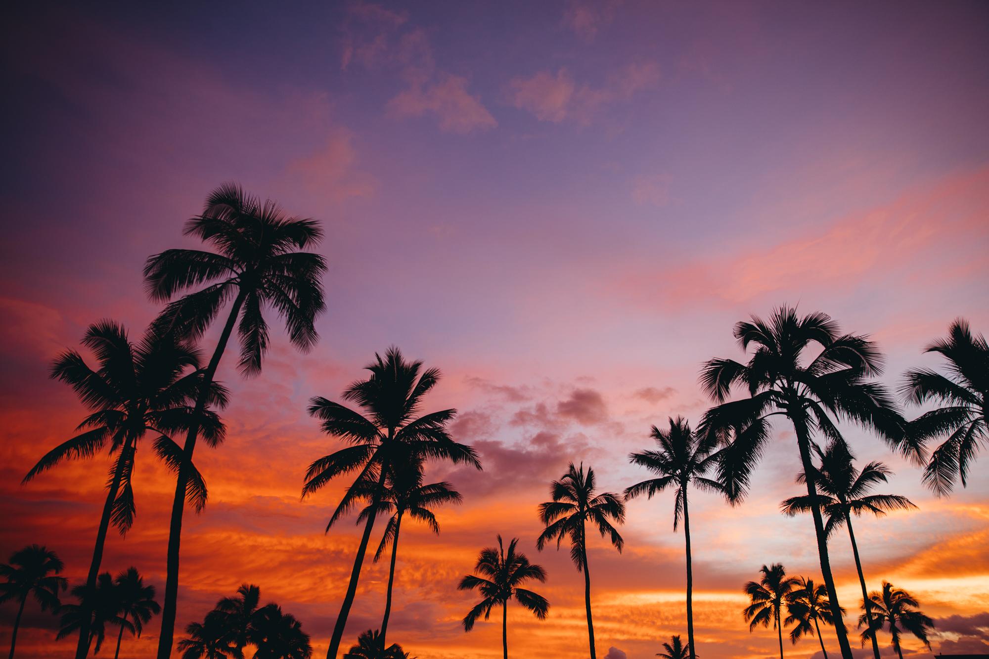 Hawaii_HBGOODIE2018 (31 of 56).jpg