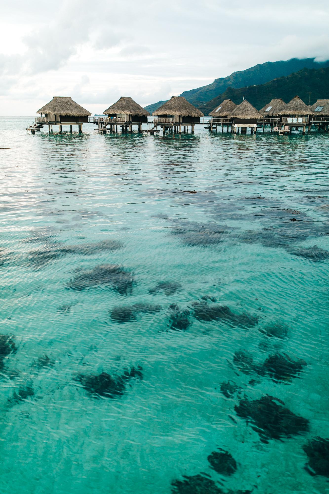 Tahiti_HBGOODIE2018 (9 of 82).jpg