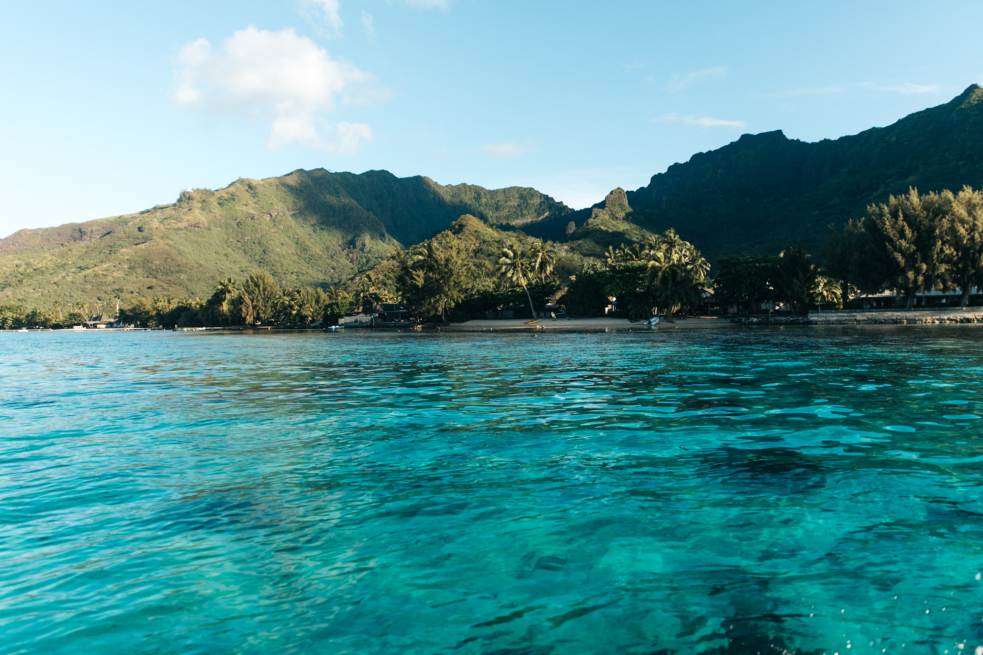 Tahiti_HBGOODIE2018 (67 of 82).jpg