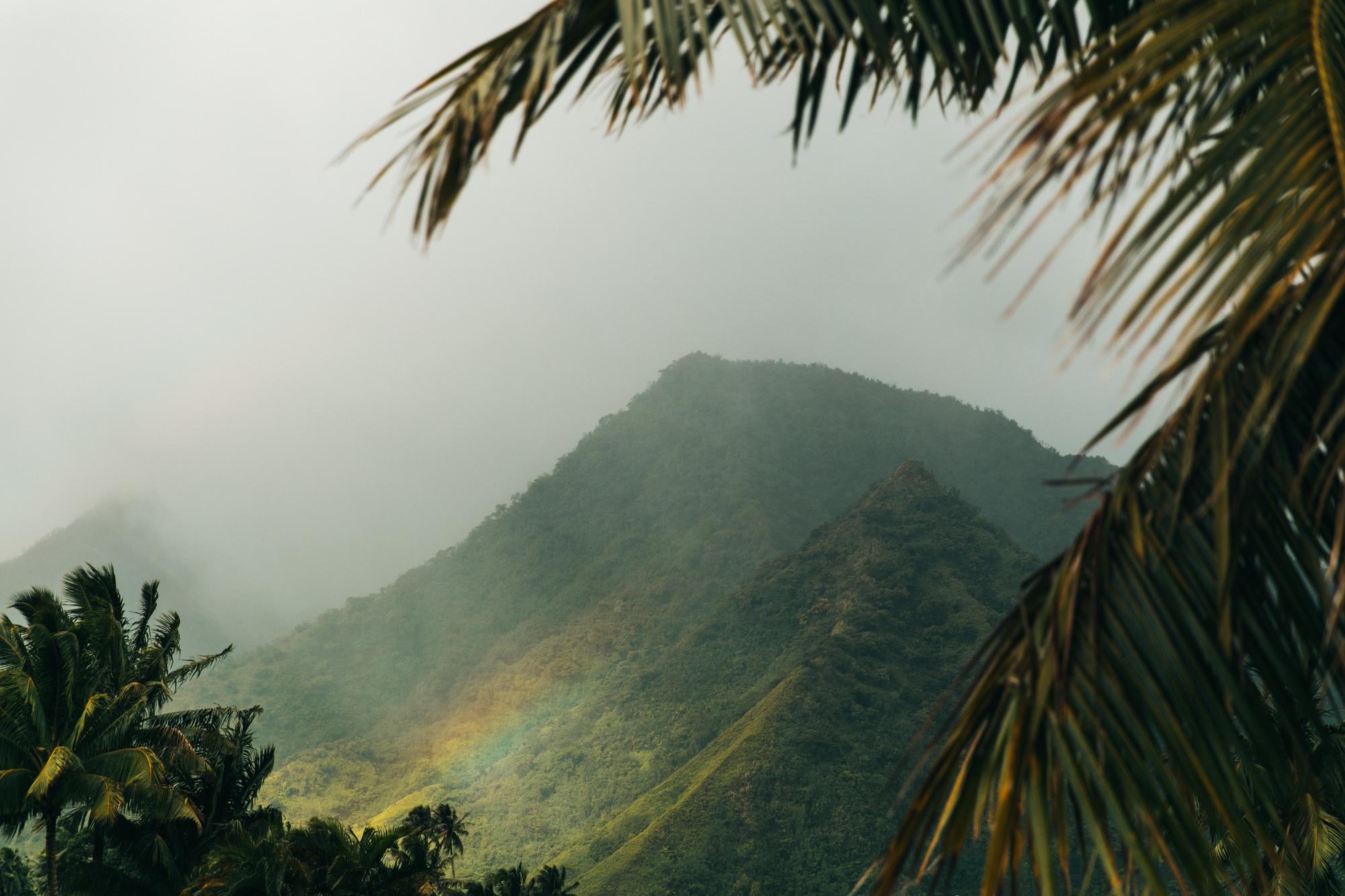 Tahiti_HBGOODIE2018 (74 of 82).jpg