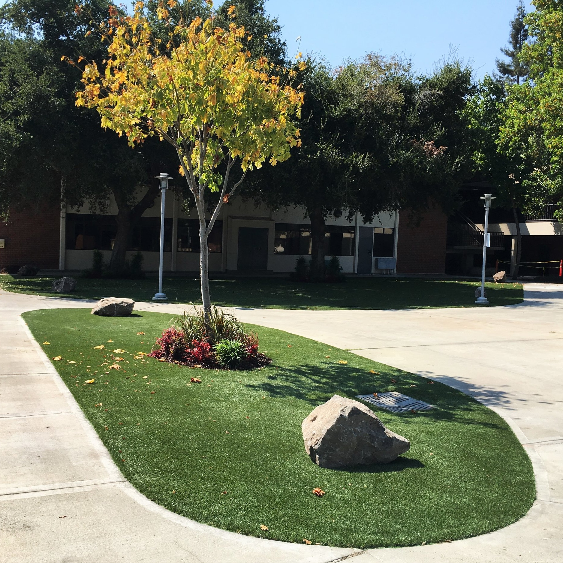 San Jose City College - Exterior Landscaping