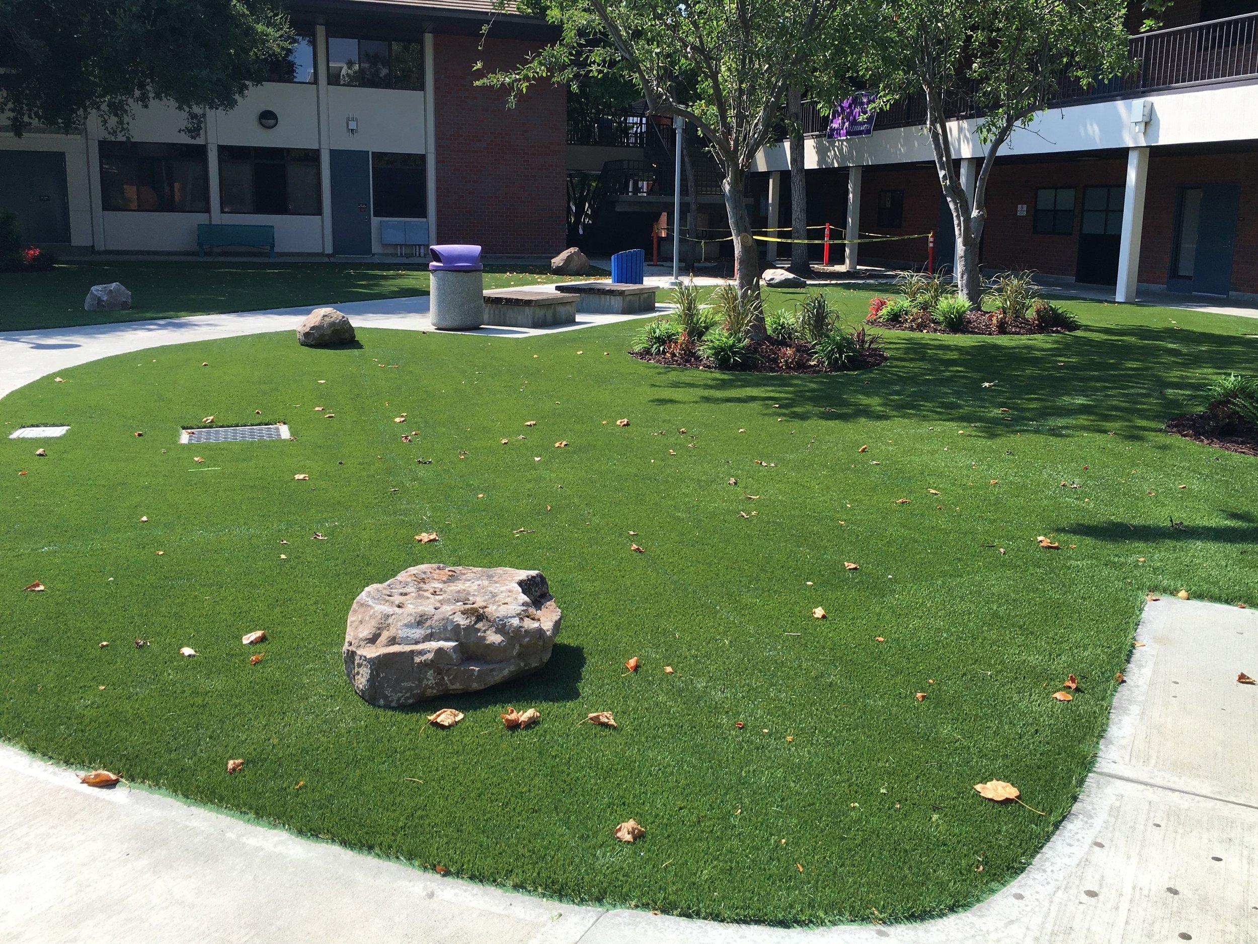 Evergreen Community College.jpg