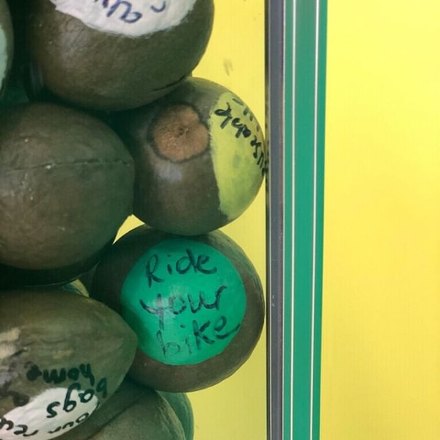 How do you take care of the earth?  We had guests write their answers on avocado pits and leave them behind for you. Now, everyone at The CADO walks away with a custom sustainability tip. If you're lucky, you'll get a blank pit and we get to give you a tip from our friends at @rubioscoastalgrill.  Our hope is that, if everyone takes the ideas to heart, we will have California avocados for generations to come. ✌🏽💛🥑