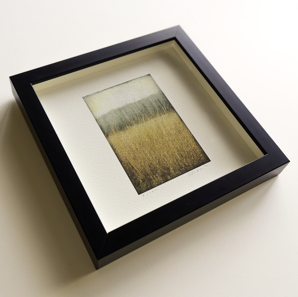 "Rectangular image in 8""x 8"" frame"