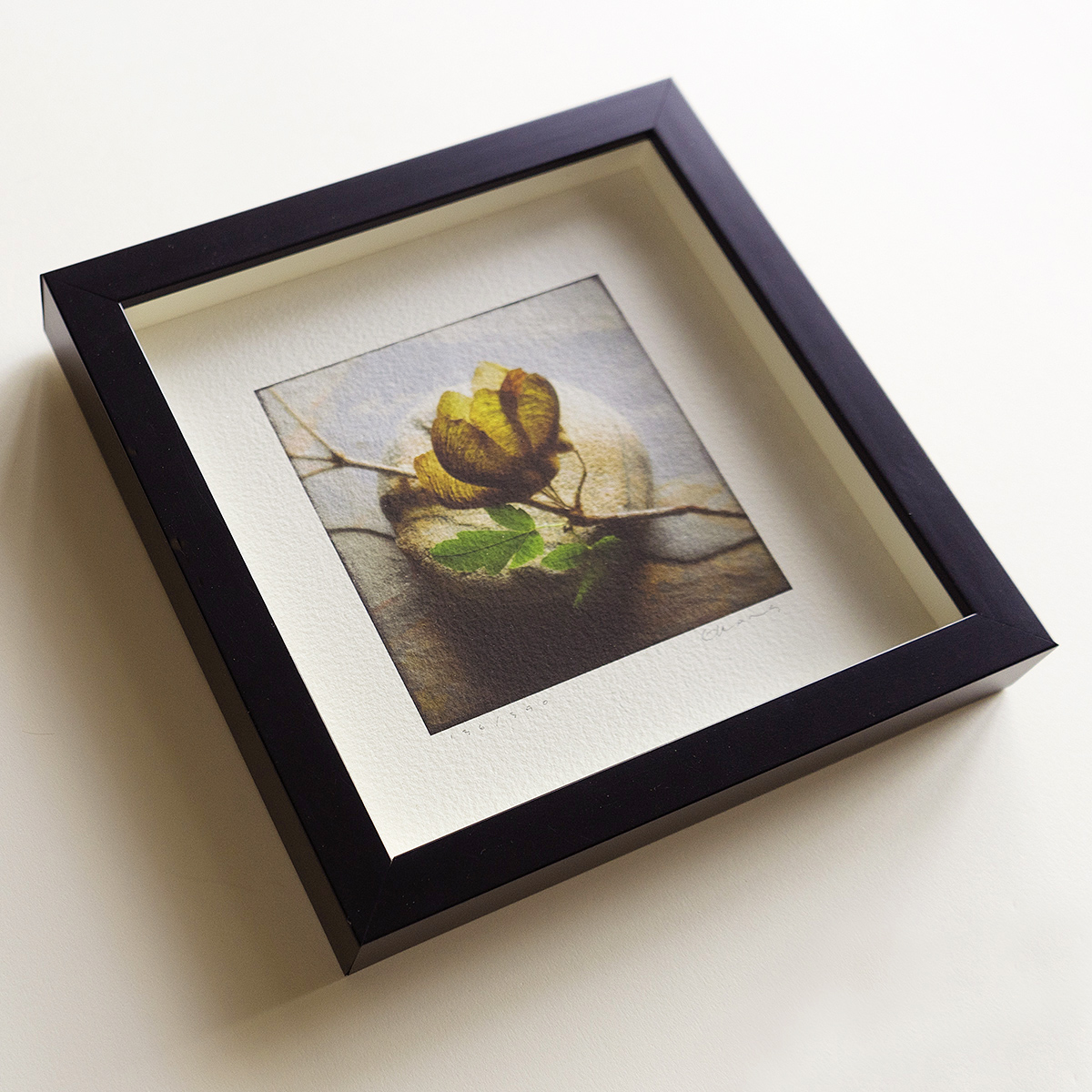 """Square image in 8""""x 8"""" frame"""