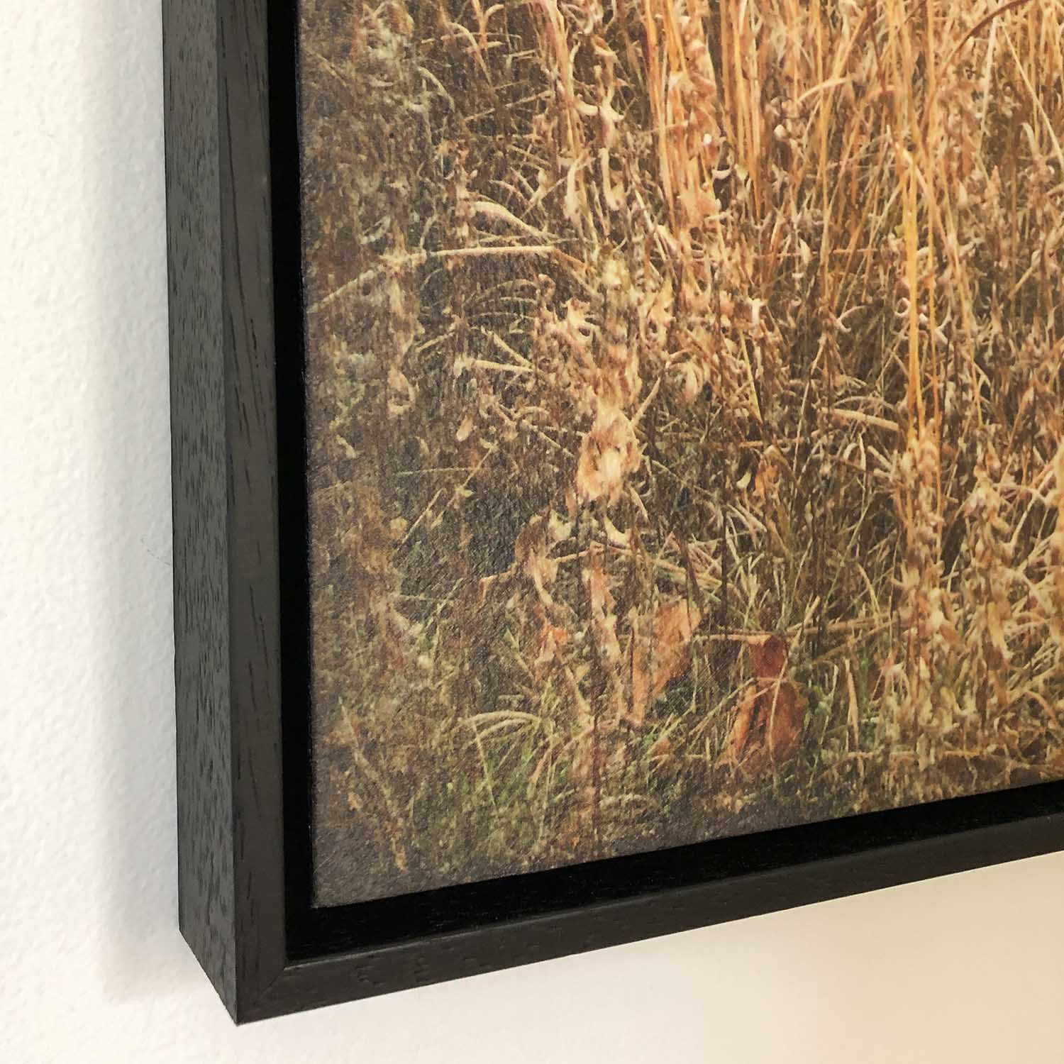 Corner detail of wood grain frame and panel with reveal.