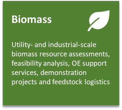 BiomassProjectBox.jpeg