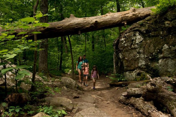 Facebook/The State Parks of Arkansas