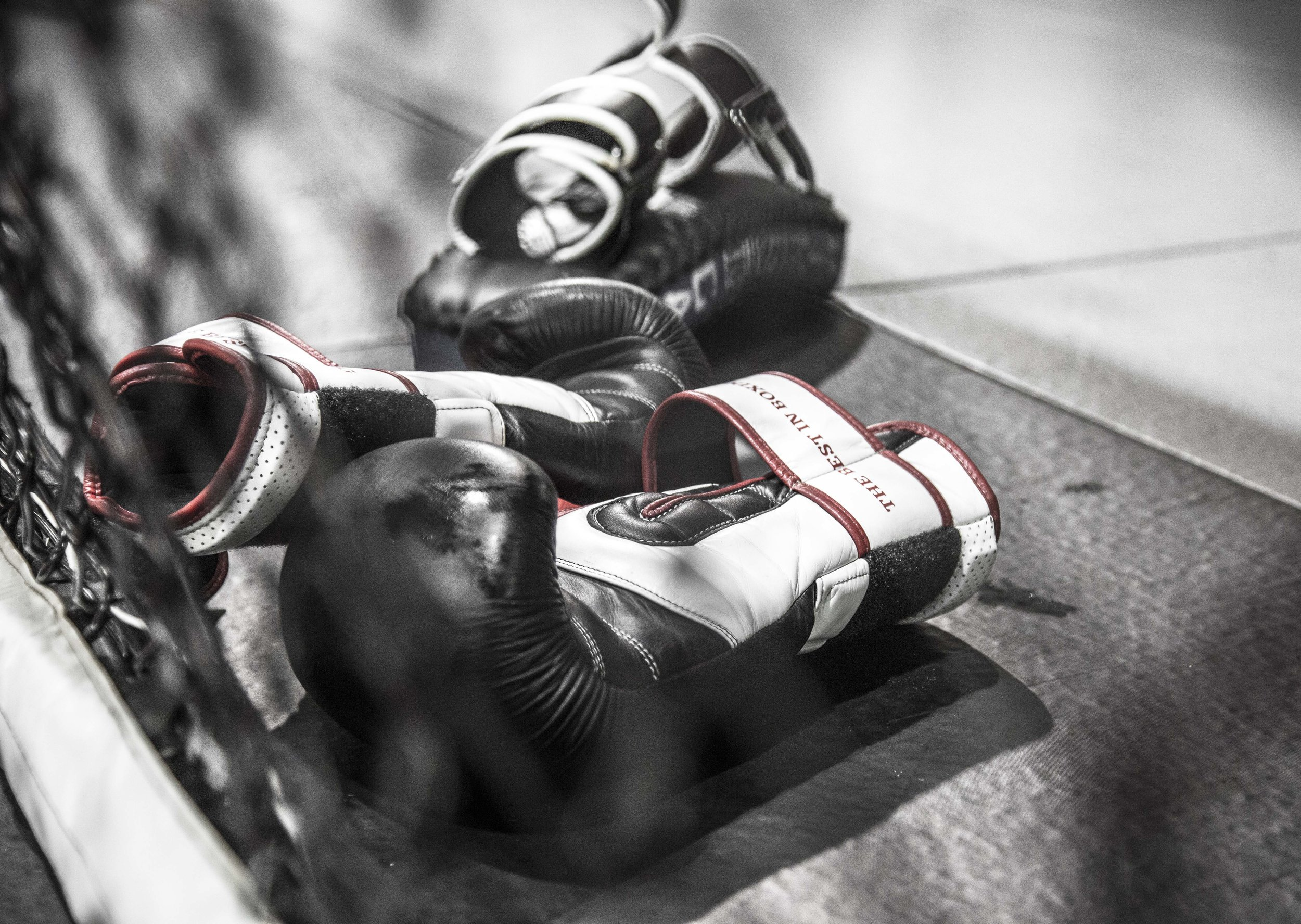 muay thai detail glove.JPG