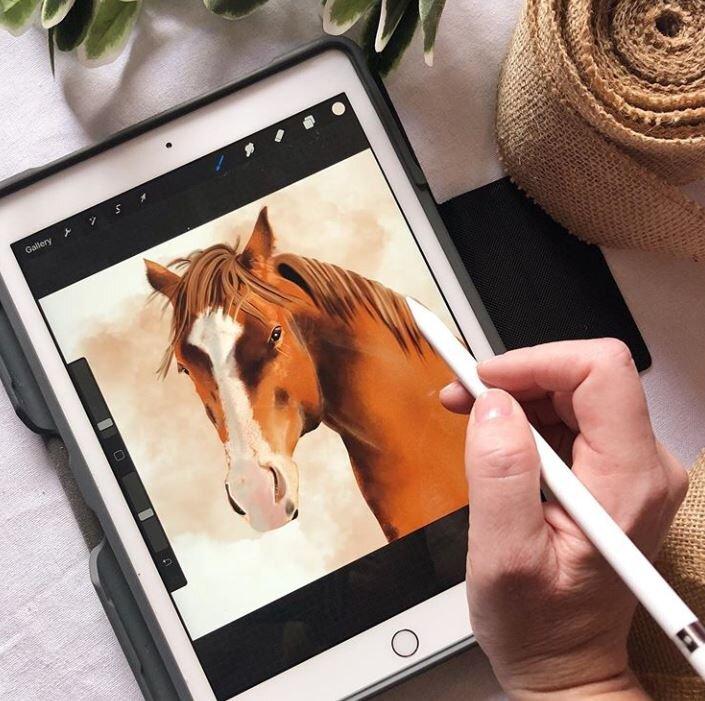horse portfolio.JPG