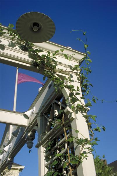 lg_bandstand_trellisdetail.jpg