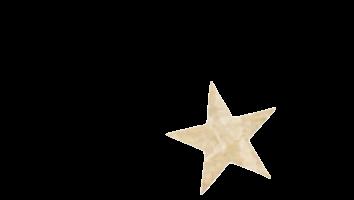 STAR TRANSPARENT.png