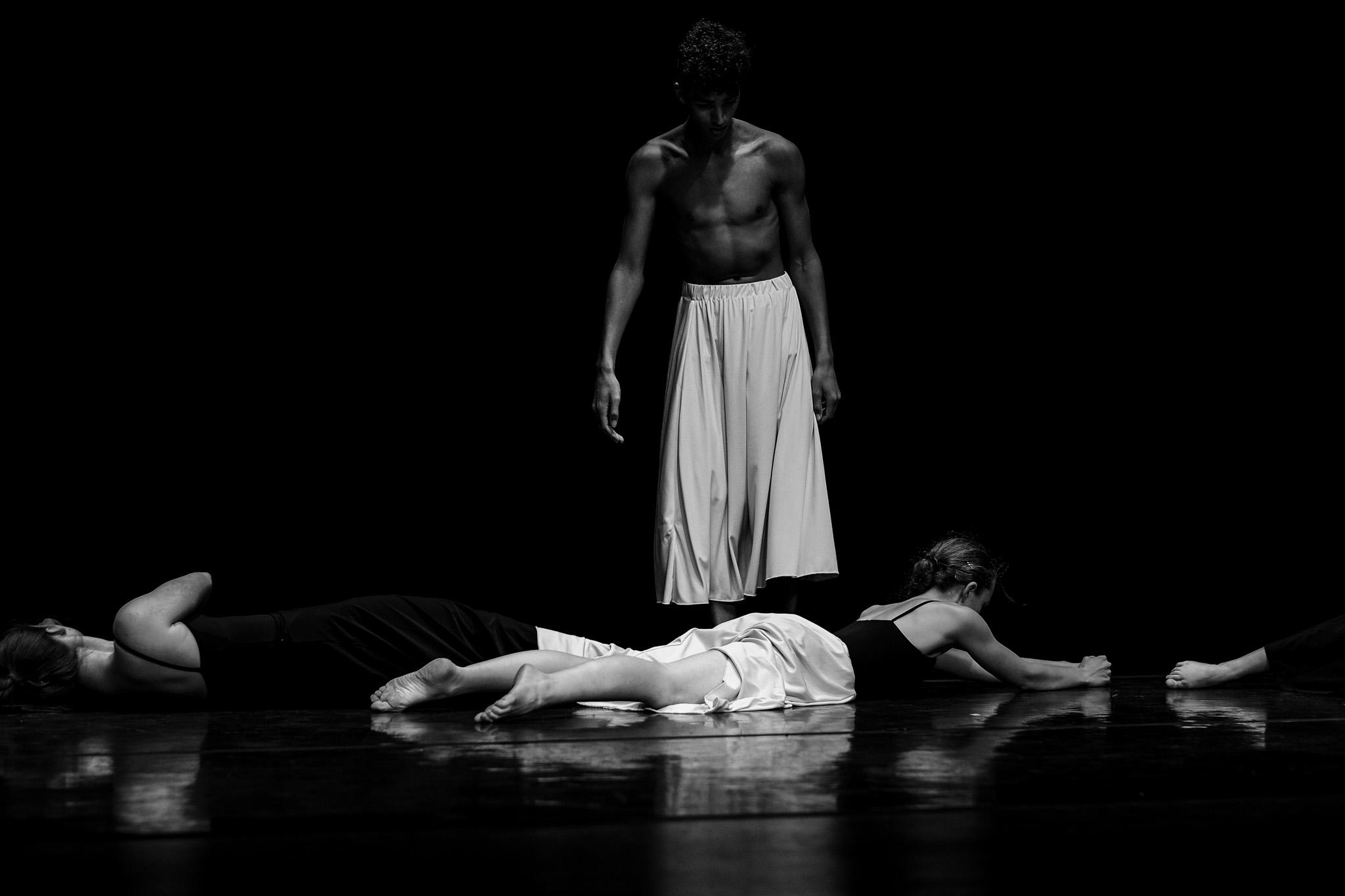 Dance_Halifax_arts_kinetic_studio_Fox_and_fellow-3.jpg