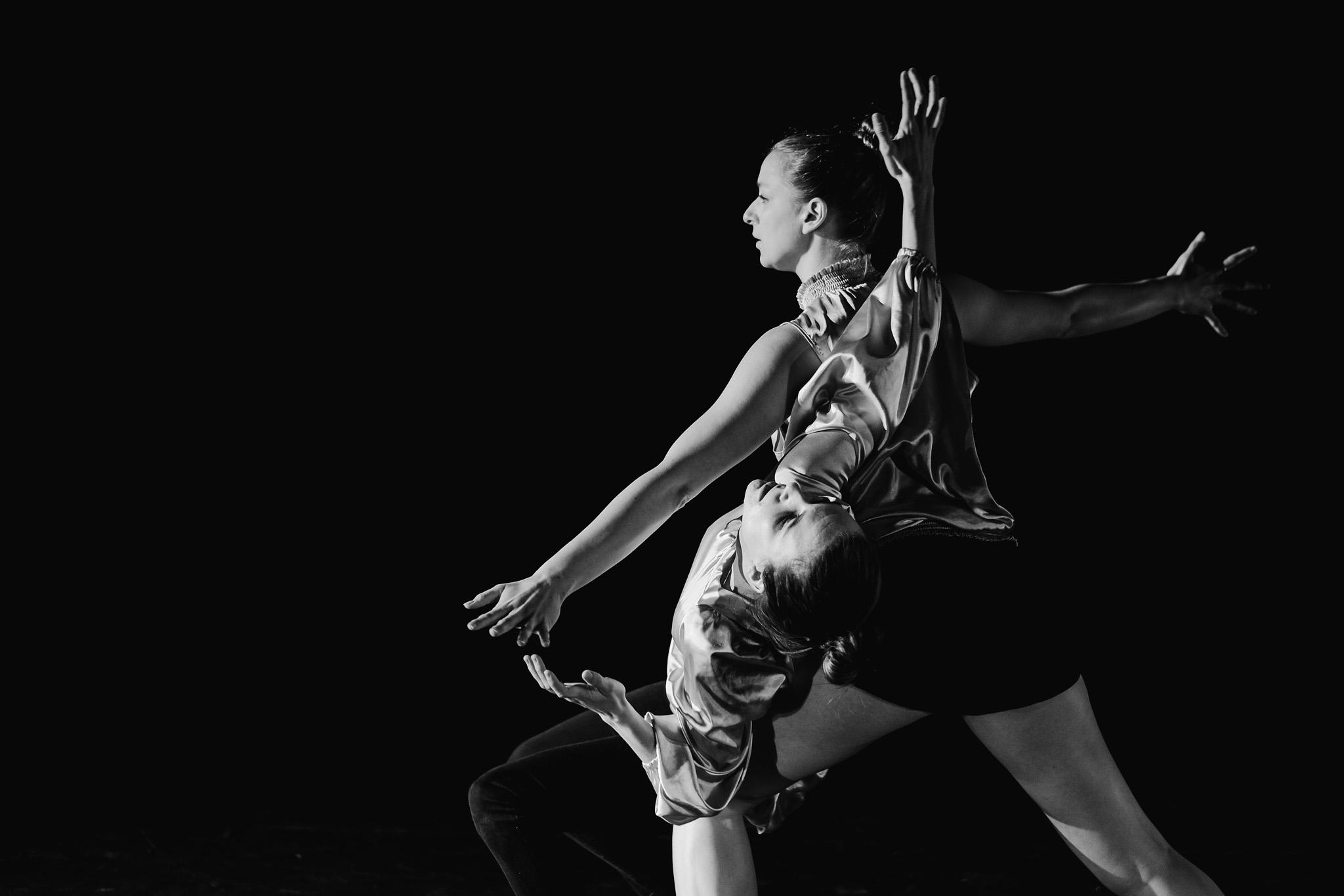 Dance_Halifax_arts_kinetic_contemporary_Fox_and_fellow-1.jpg