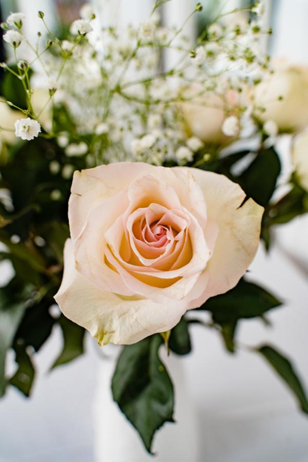 ChantalandElliot-49halifax-novascotia-weddingphotography-wedding-foxandfellow-oceanwedding.jpg