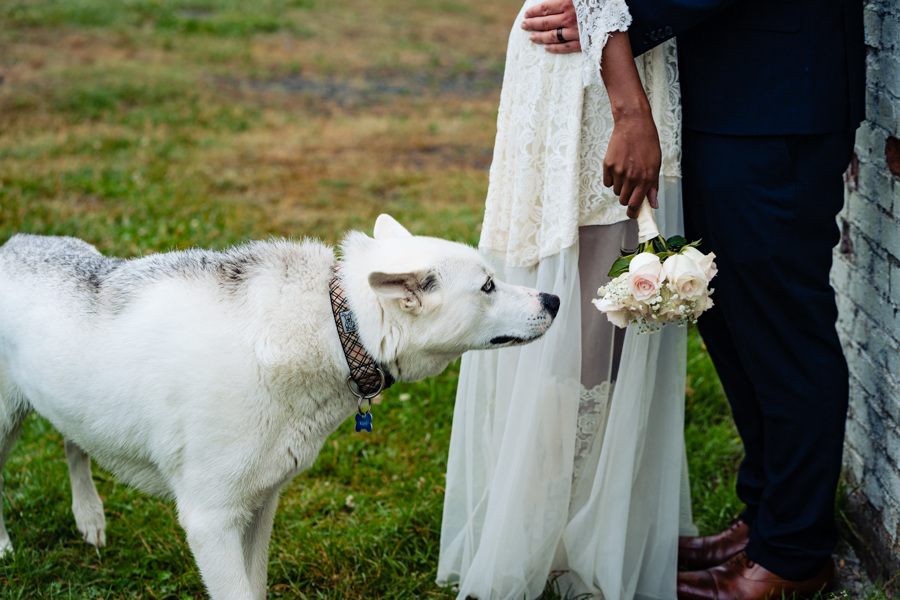 ChantalandElliot-194halifax-novascotia-weddingphotography-wedding-foxandfellow-oceanwedding.jpg