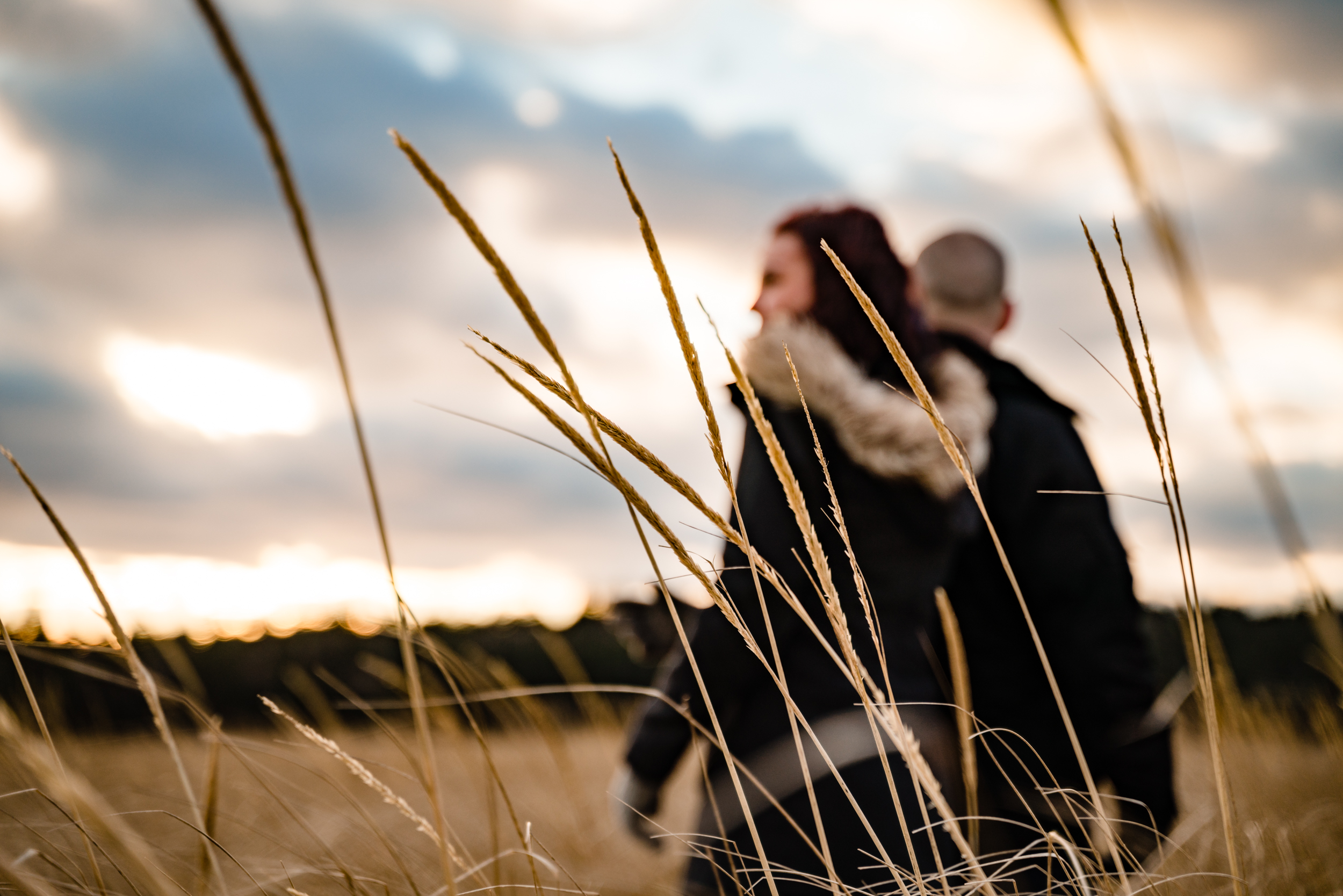 Sarah&Shayne-Halifax-engagement-weddingphotography-weddingphotographers-novascotia (25 of 41).jpg