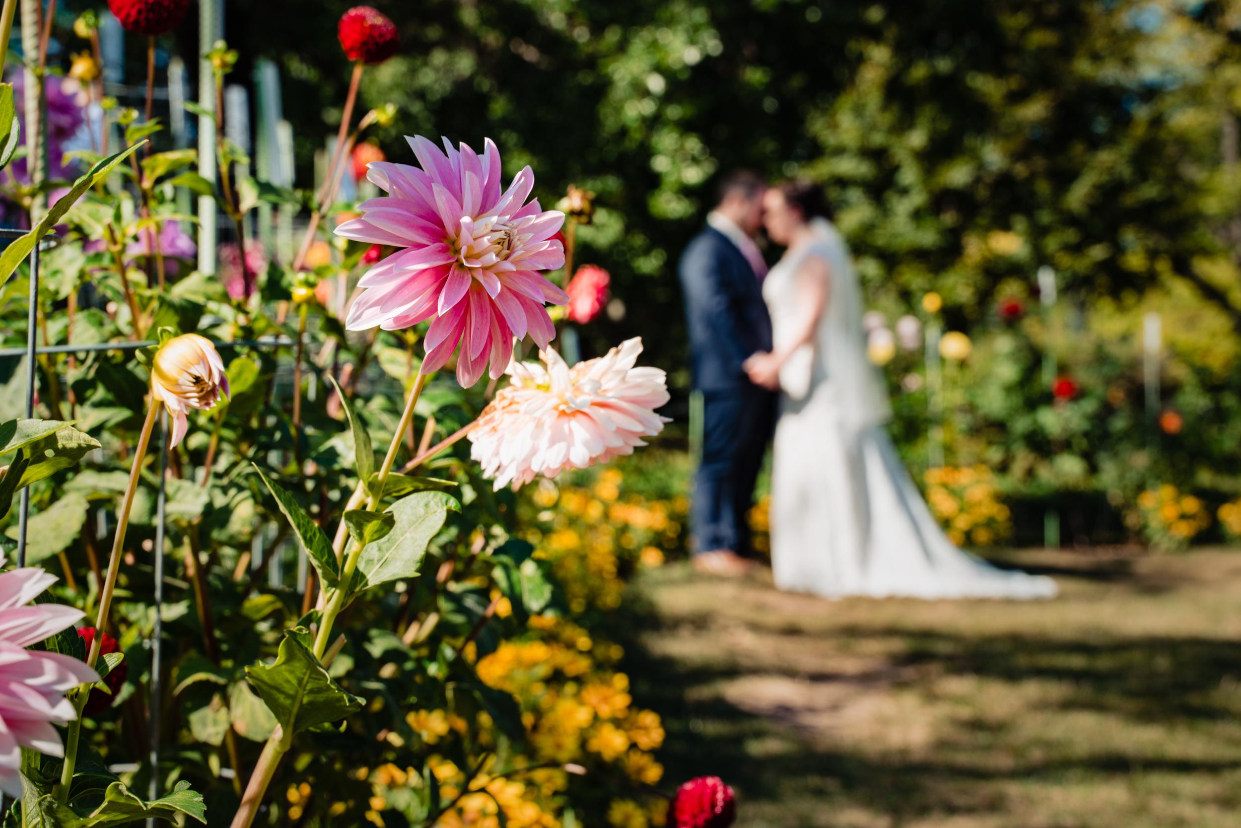 Halifax-wedding-photography-fall-photographers-novascotia-canada-ottawa (67 of 113).jpg