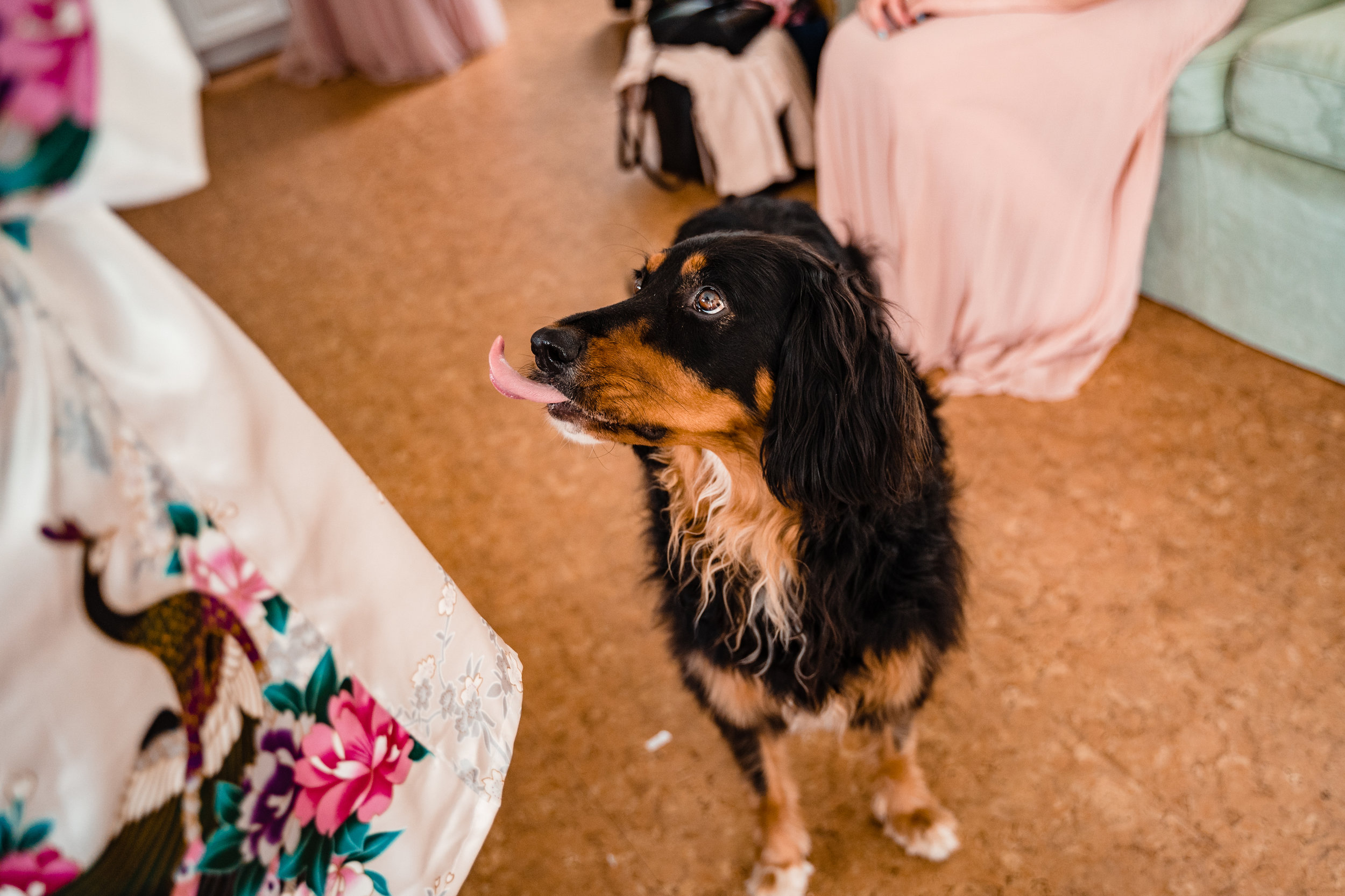 Janelle-Mitch-Halifax-Wedding-Nova-Scotia-Photography (15 of 163).jpg