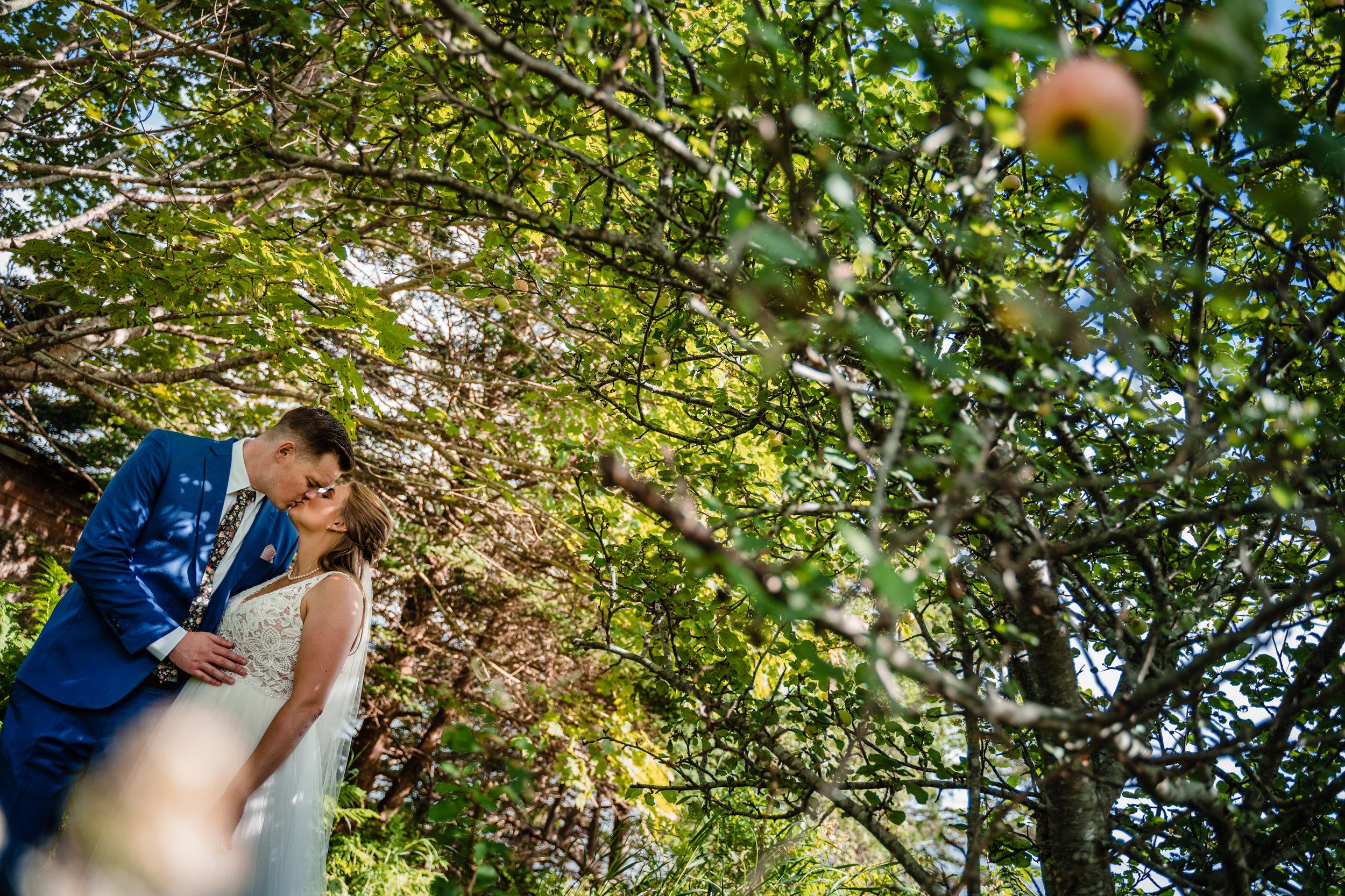 Janelle-Mitch-Halifax-Wedding-Nova-Scotia-Photography (85 of 163).jpg