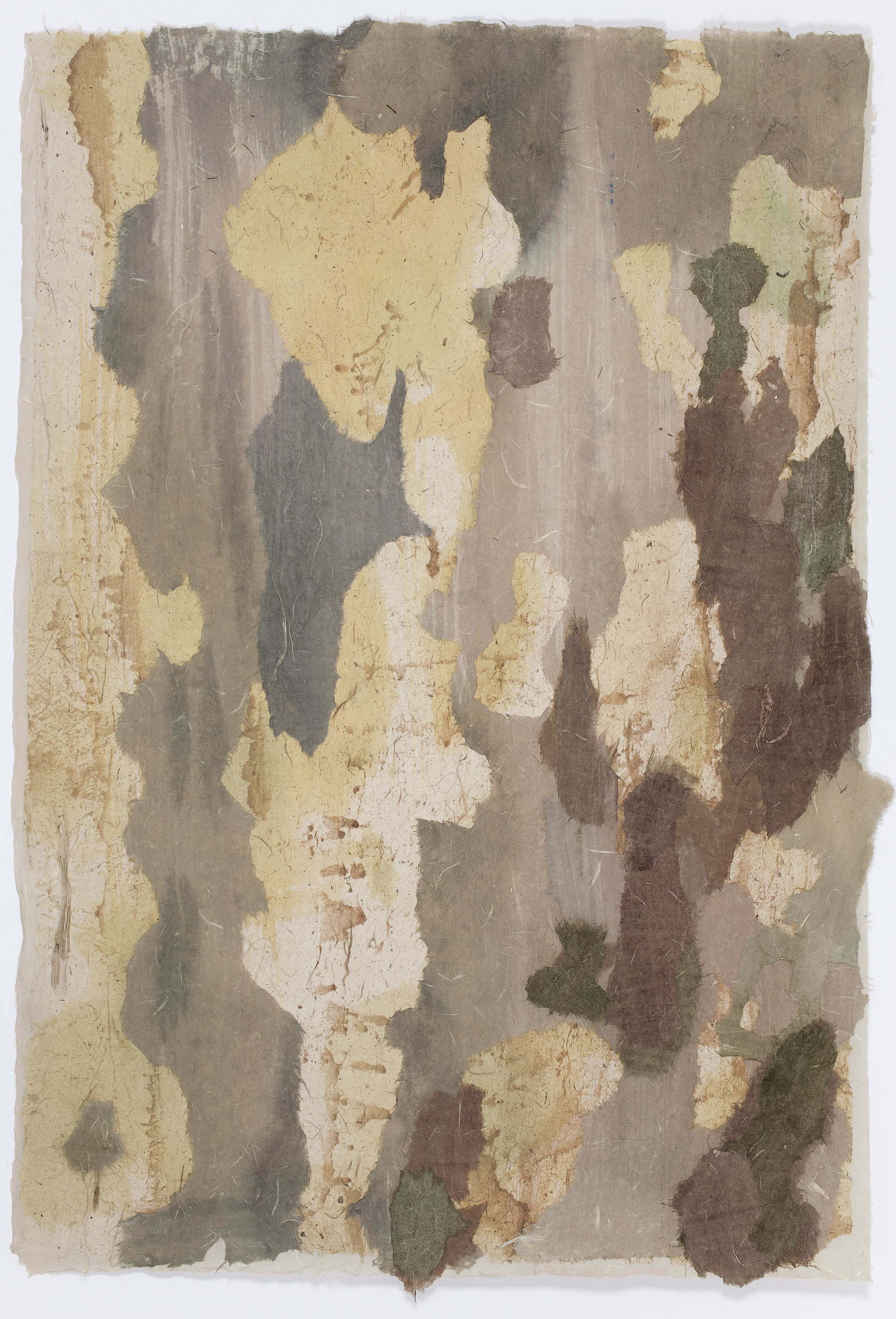 Bo Zhang. Tree Bark# 6. Mixed media on rice paper. 19in x 28 in. 2013.
