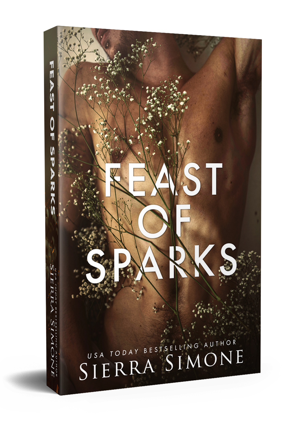 feast of sparks paperback mock.png