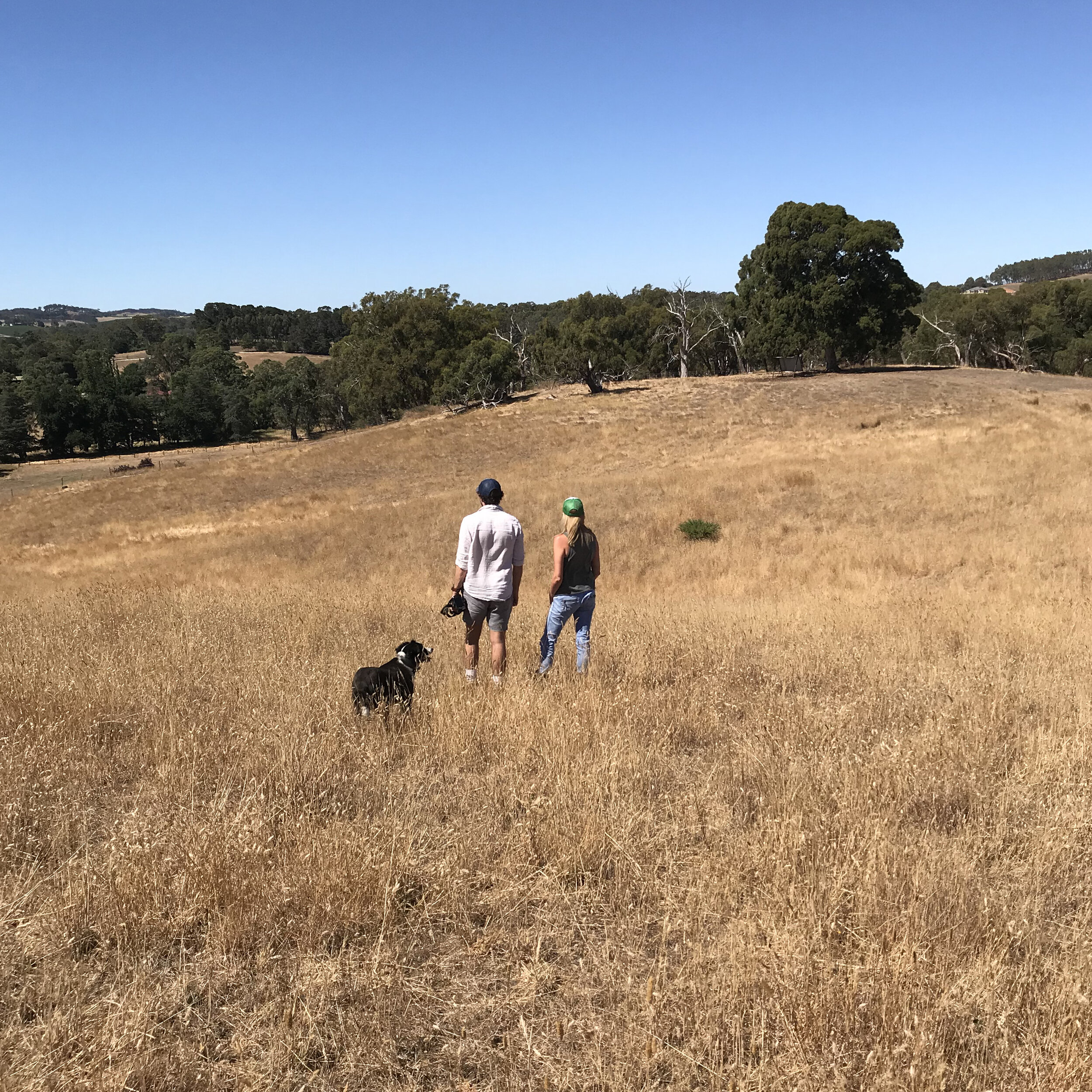 Site for the upcoming Oakbank House in the Adelaide Hills