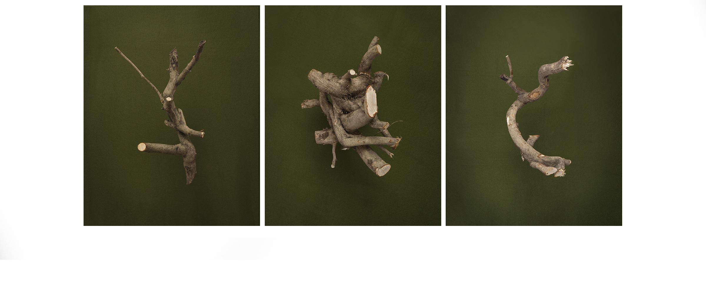 Cuts, triptych