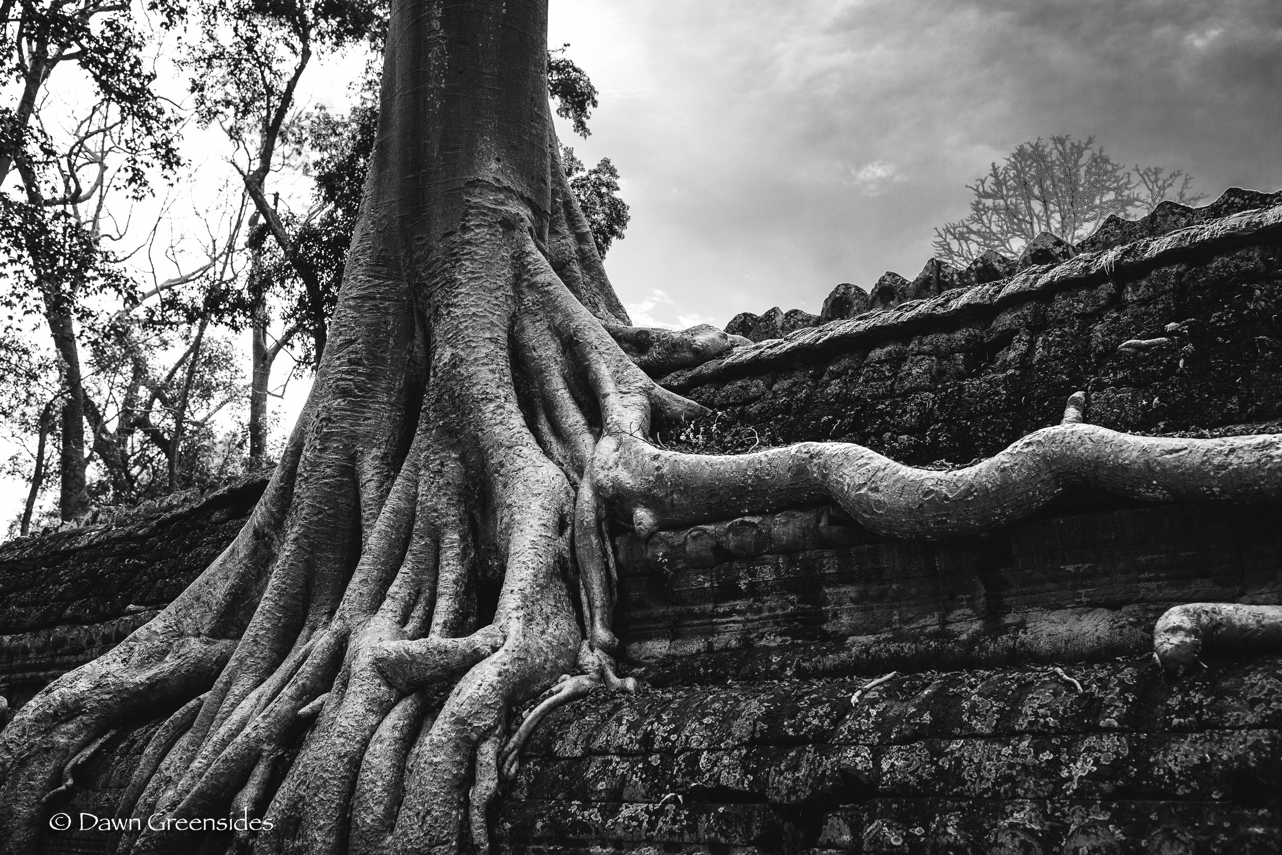 Angkor Wat-12.jpg