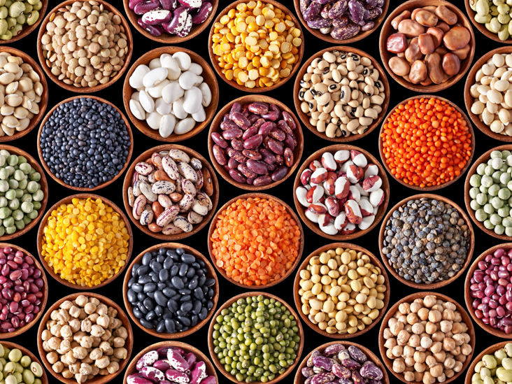 AN147-Legumes-In-Bowls-732x549-thumb.jpg