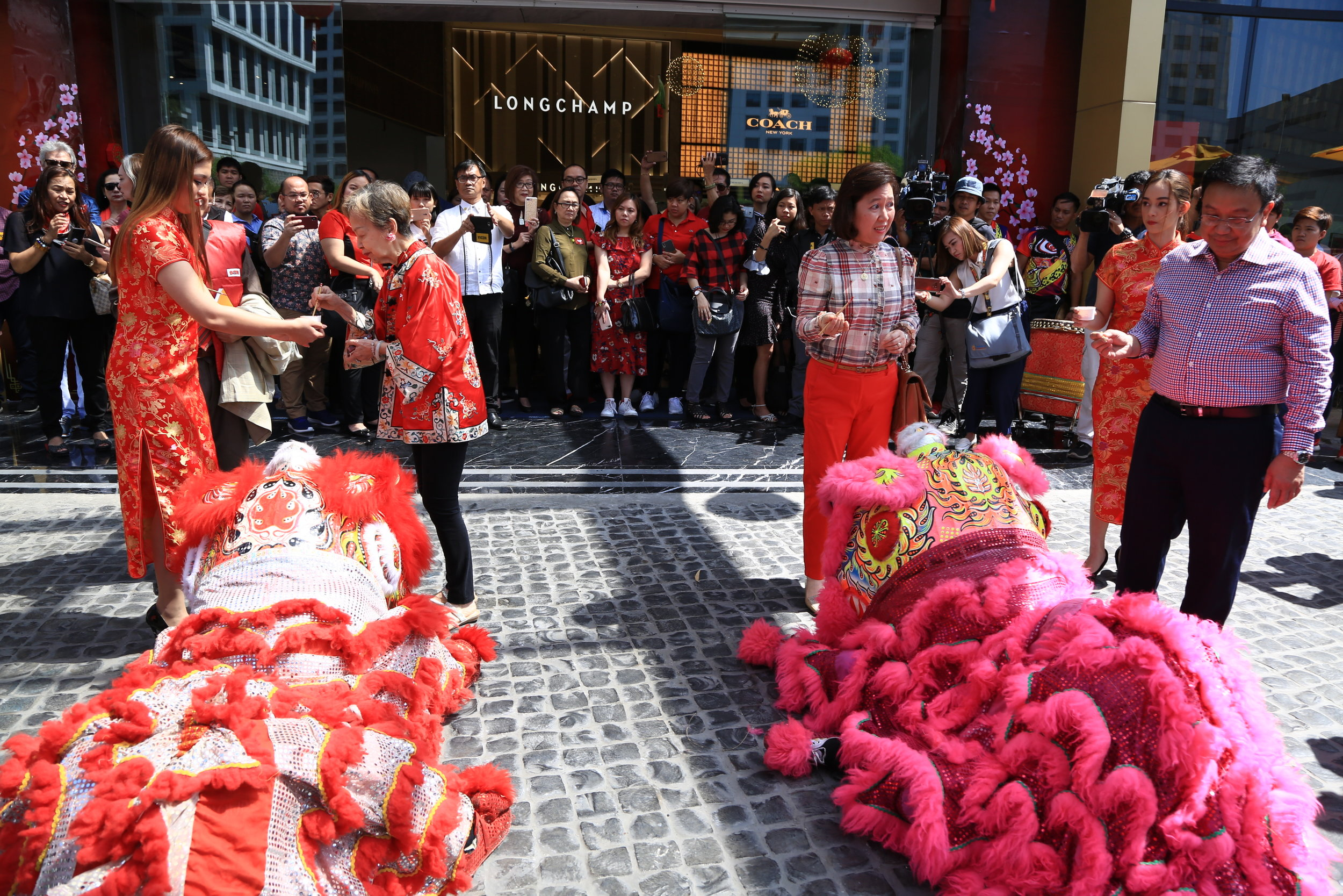 Dragons wait for their turn to dance while Princell Lim and Jullie Yap Daza perform some Lunar New Year ritua
