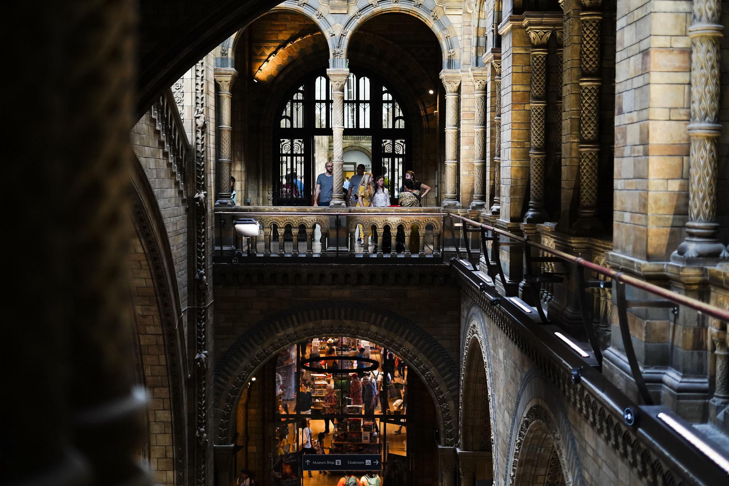 Natural History Museum_London.JPG