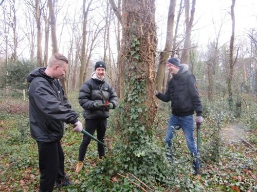 Walton Charity woodlands.jpg