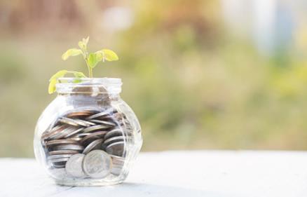 individual Grants -