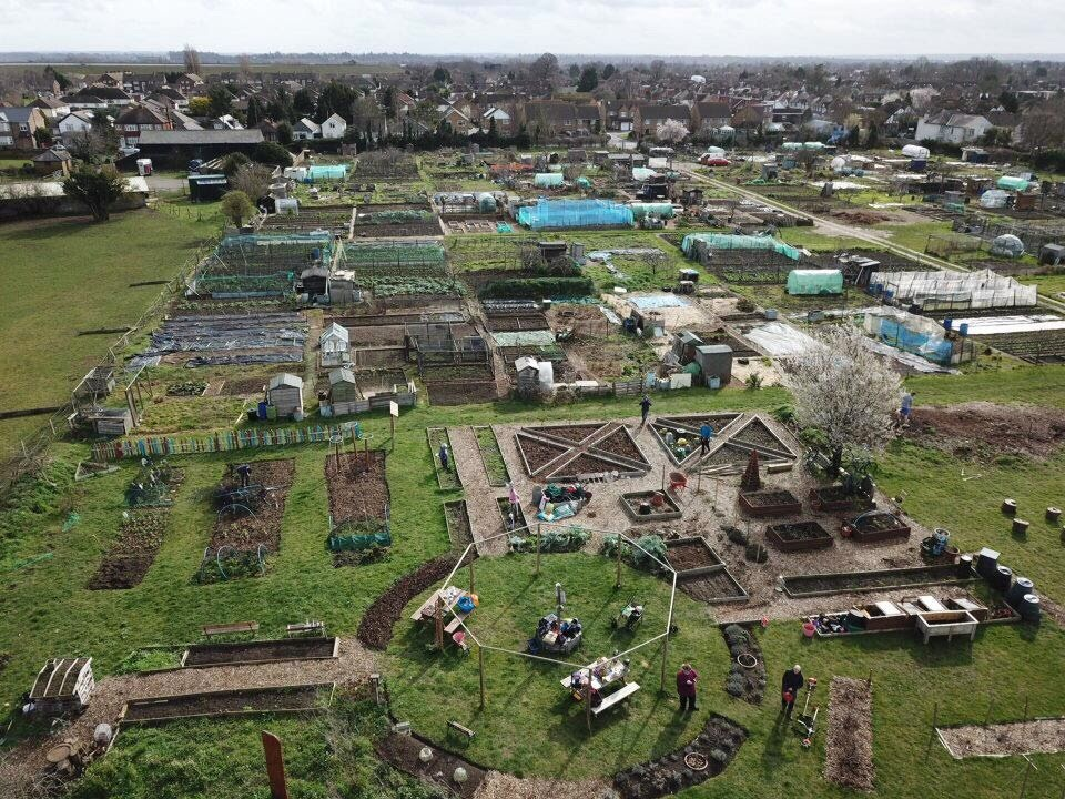 Walton Charity Terrace Road Allotment