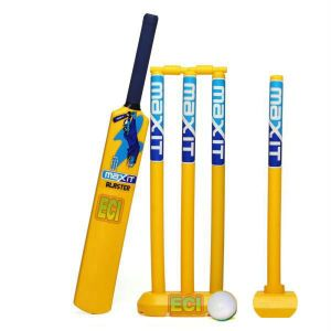 Cricket bat and stumps.jpg