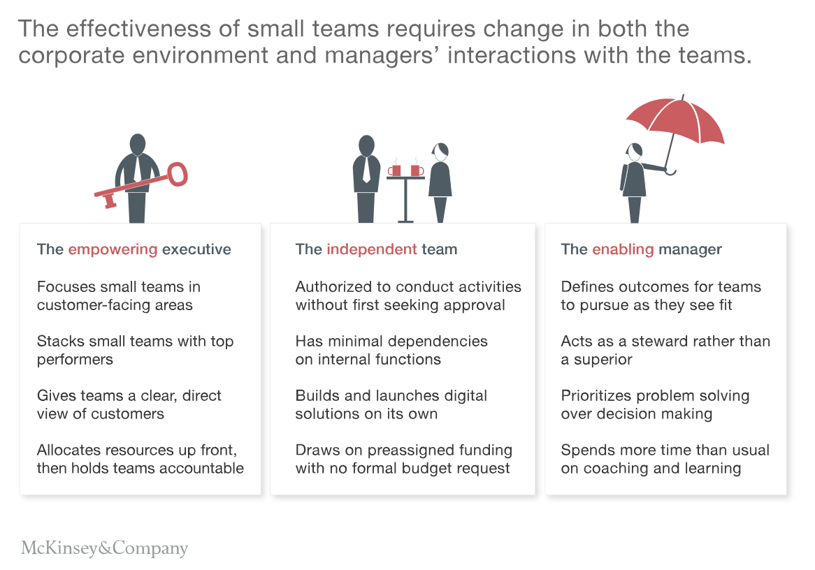 FIGURE 6: How to enable small teams in an agile company (Source: McKinsey)