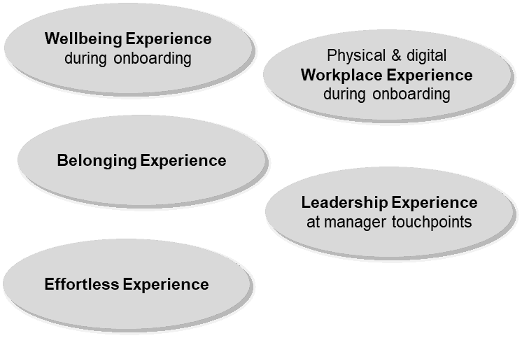 The Experience Clusters