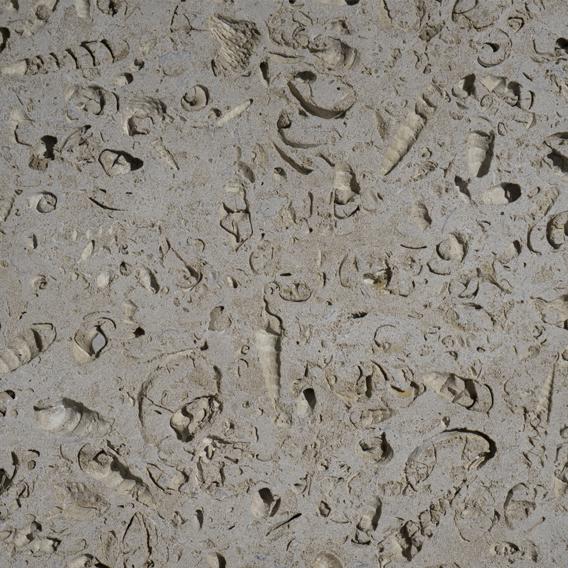 Portland Stone Jordans Roachbed