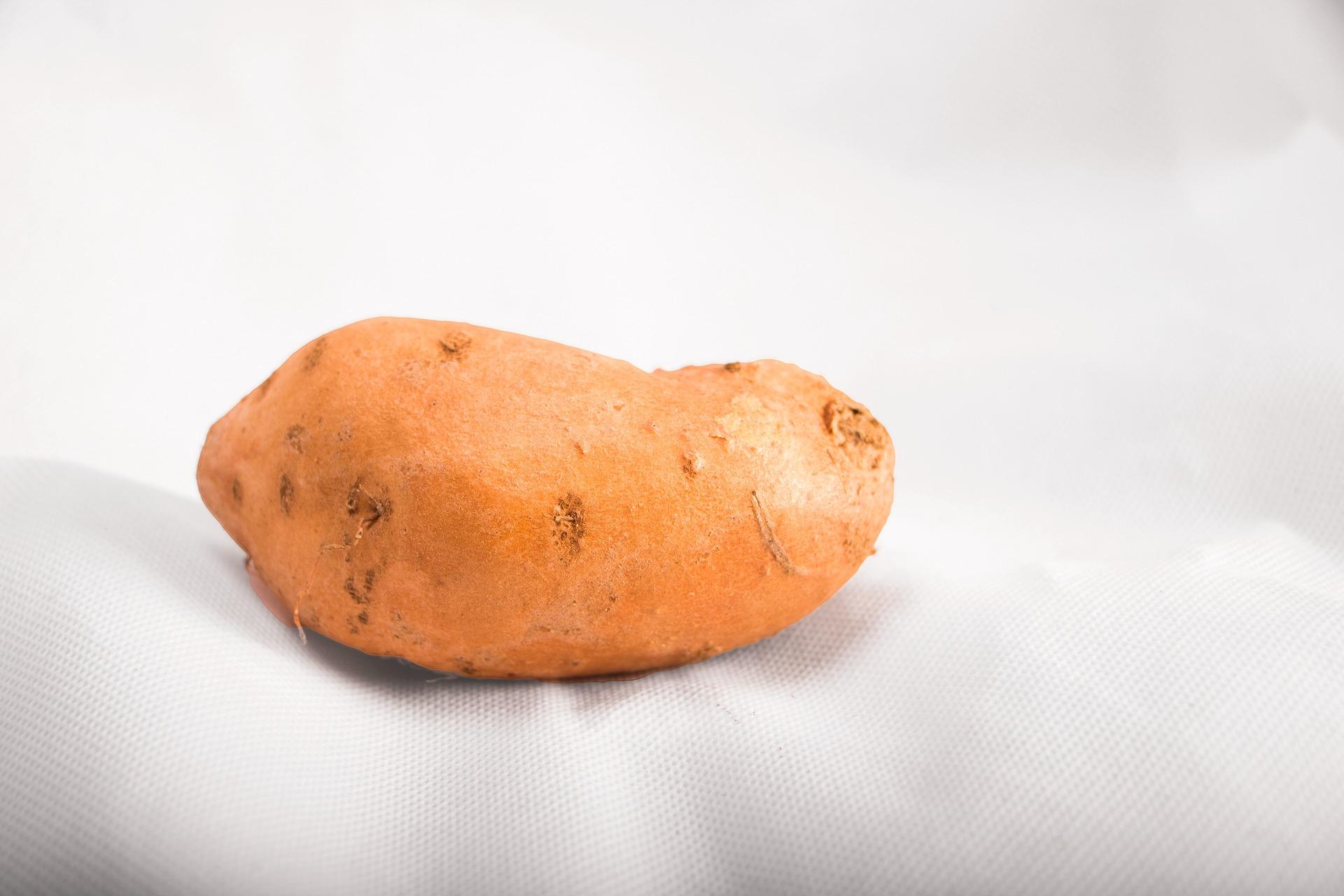 sweet-potatoe-3638883_1920.jpg