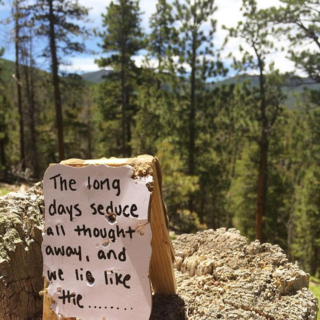 Thoughts Found Whilst Hiking - part 1. #randomfinds #hiking #hikingcolorado #lovemesomemountains