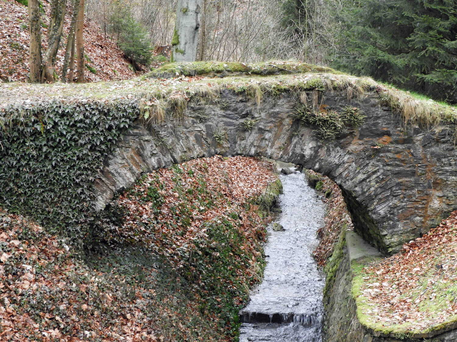 czech-cesky-sternberk-castle-bridge-stream.jpg